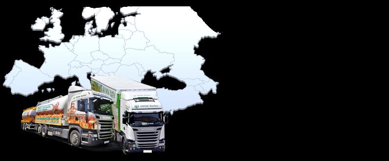 Máme vlastnú flotilu nákladných áut pripravených na prepravu paliet do najvzdialenejších kútov Európy. Rýchlo realizujeme objednávky a garantujeme včasné dodanie!